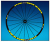 "Adesivi STICKERS Llanta RIM PROGRESS XCD EVO 29"" AM44 MTB DOWNHILL."