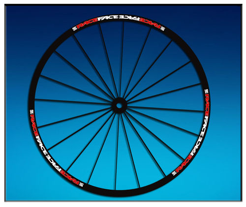"DES AUTOCOLLANTS STICKERS UN FEUILLARD RIM RACEFACE 26 ""27,5 29"" BIKE AM51 MTB DOWNHILL."